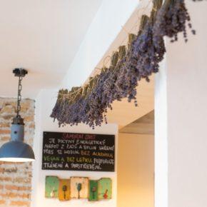 Gourmet Jižní Morava - bistra jižní Morava - Chez Martine Znojmo