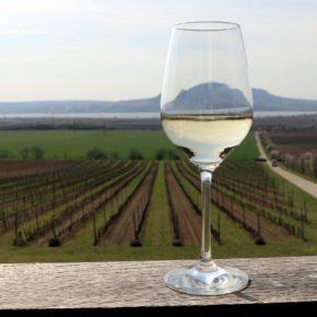 Gourmet Jižní Morava - víno a vinařství jižní Morava - Sonberk Popice