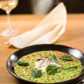 Gourmet Jižní Morava - restaurace jižní Morava - Statek Samsara