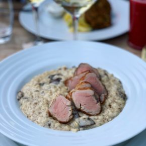 Gourmet Jižní Morava - bistra jižní Morava - Sojka & spol. Restaurant & Koloniál